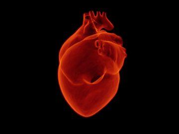 Día Mundial del Corazón 2021: ¿Por qué se celebra el 29 de septiembre?