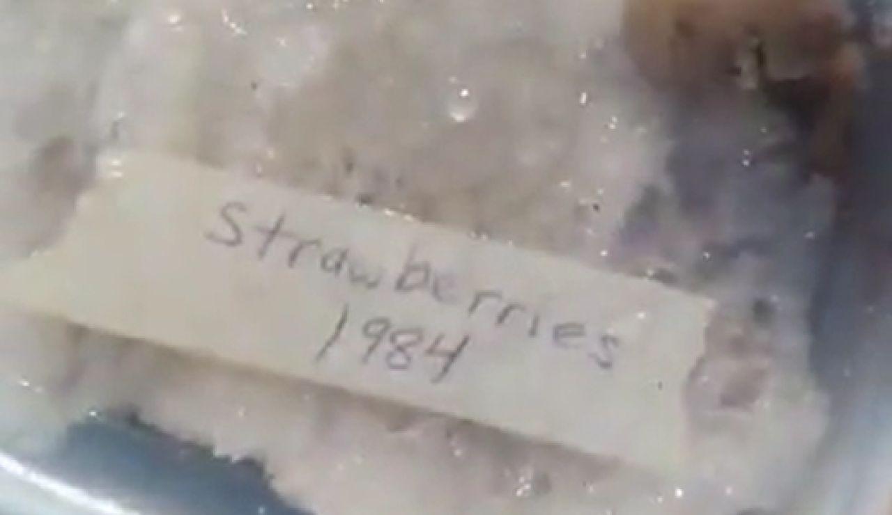 Una tiktoker descubre comida de 1972 en la nevera de su abuela