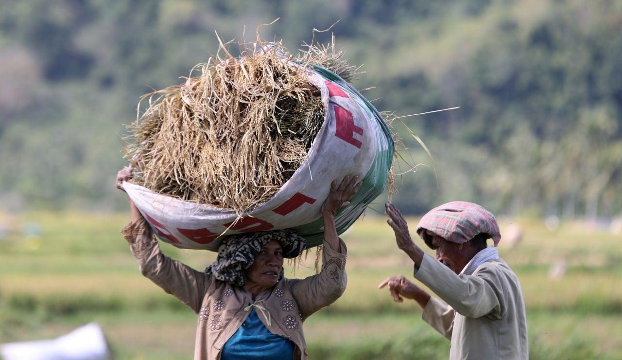 Organizaciones humanitarias alertan de una crisis alimentaria sin precedentes por el cambio climático