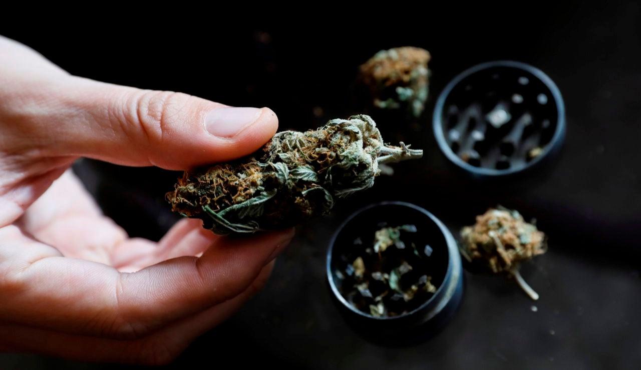 El Congreso de los Diputados debate sobre el consumo recreativo y medicinal del cannabis