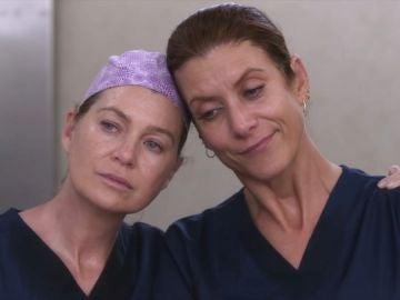 Ellen Pompeo y Kate Walsh en 'Anatomía de Grey'
