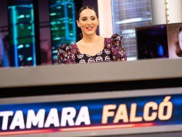 Cocina para invitados ilustres: Tamara Falcó revela sus recetas para George Clooney e Isabel Díaz Ayuso