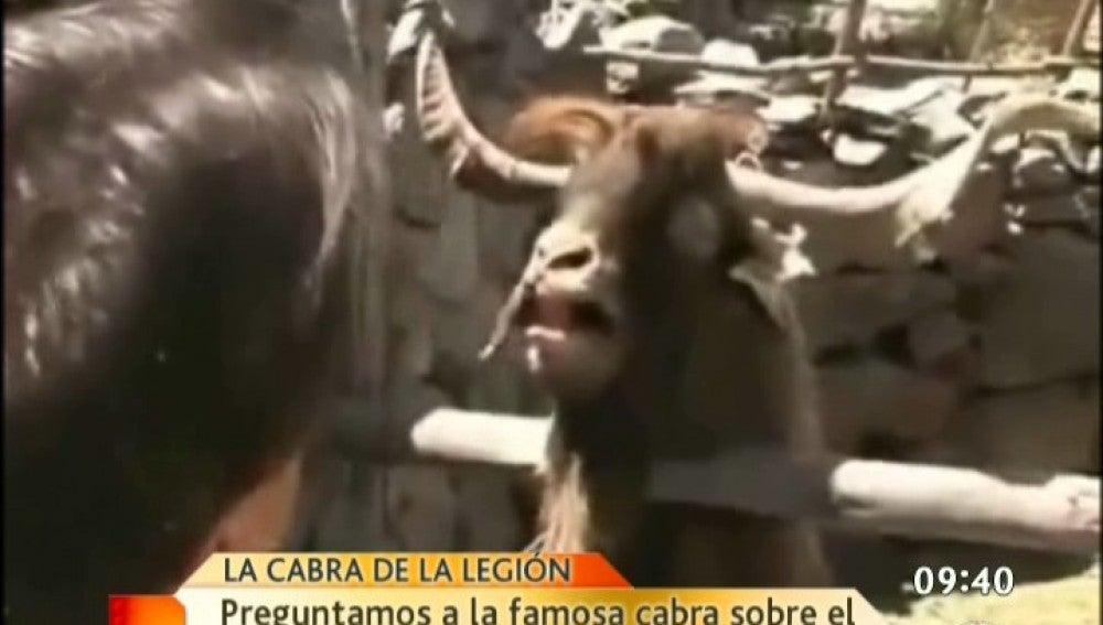 La cabra y la crisis