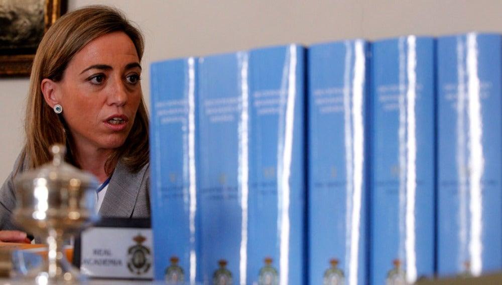 Carme Chacón, ministra de Defensa (Archivo)
