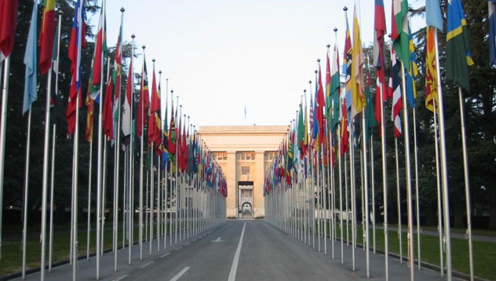 Infome de la ONU
