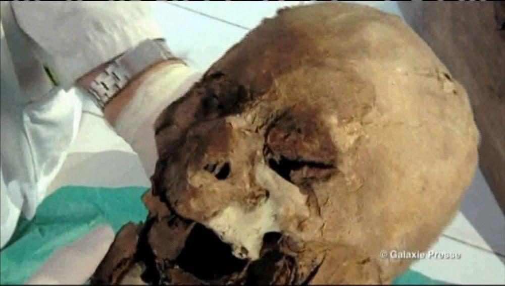 Se confirma que un cráneo hallado es el de Enrique IV