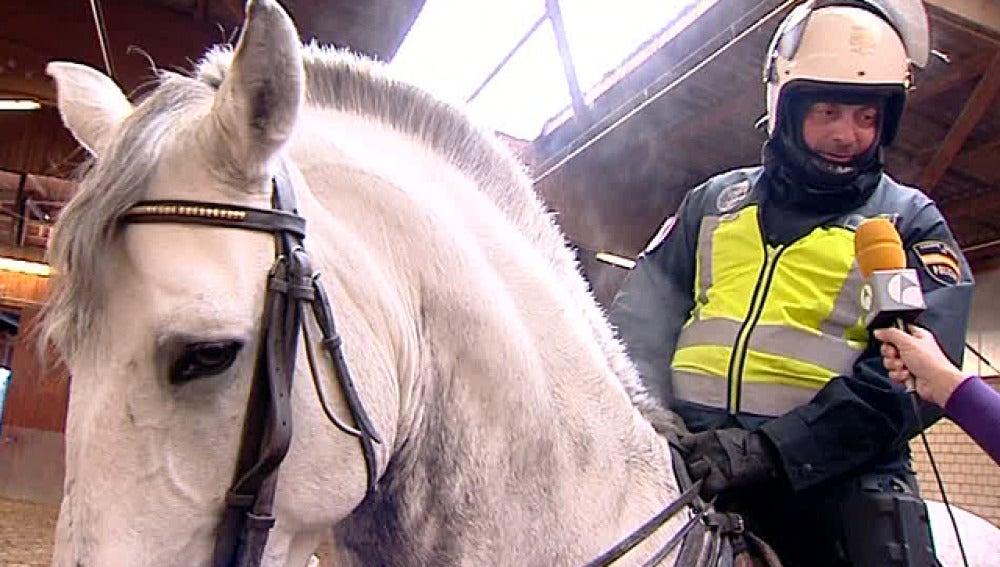 Un policía junto a su caballo