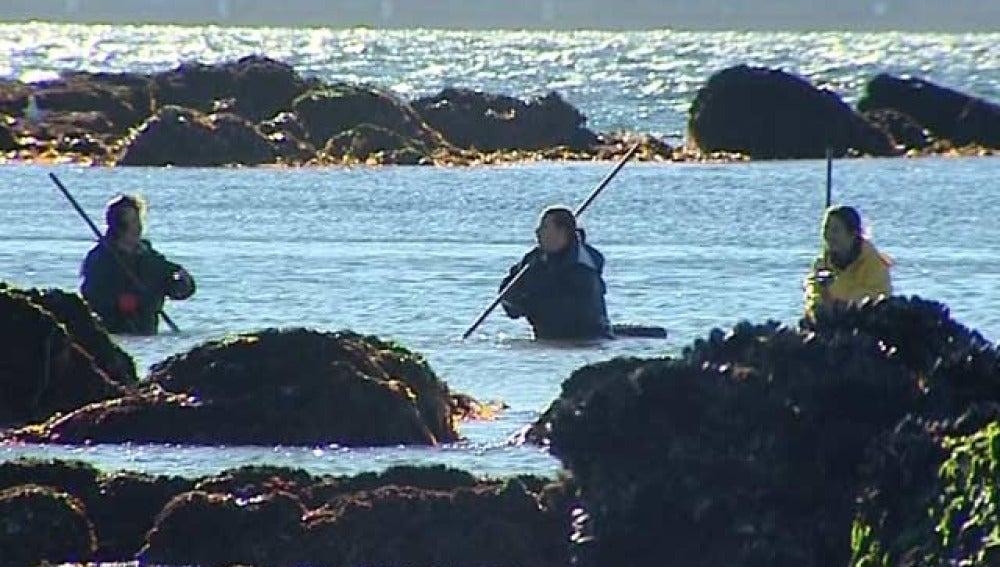 Tres mujeres trabajan como mariscadoras en Pontevedra