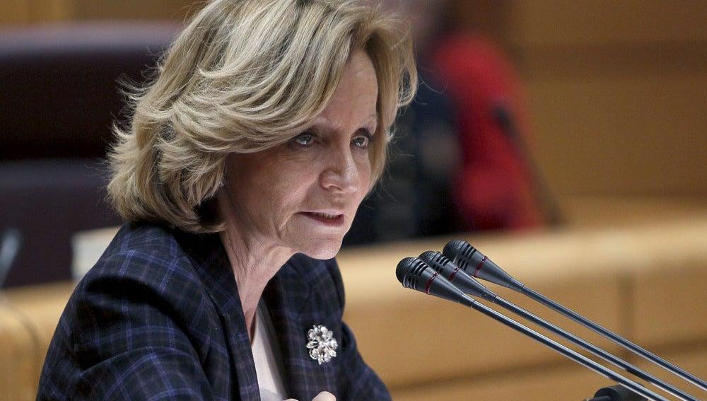 La primera de Economía, Elena Salgado, en una comparecencia pública.