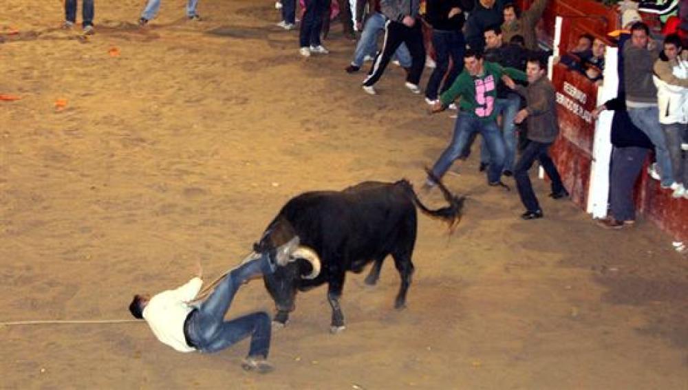 Un joven francés herido muy grave en el Carnaval del Toro de Ciudad Rodrigo