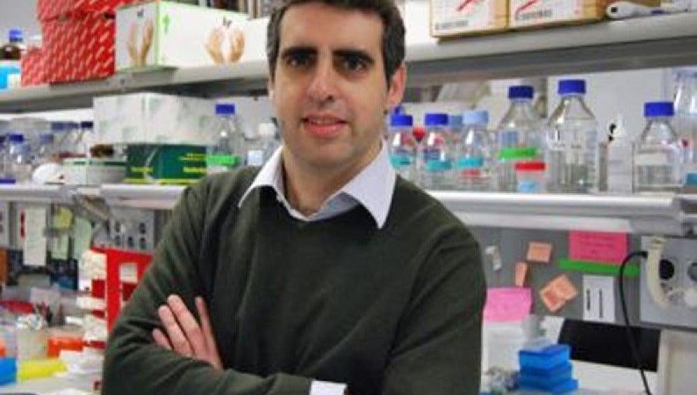 El Director del Programa de Epigenética y Biología del Cáncer, Manel Esteller.