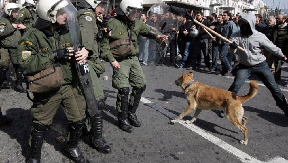 Lukánikos, el perro anarquista
