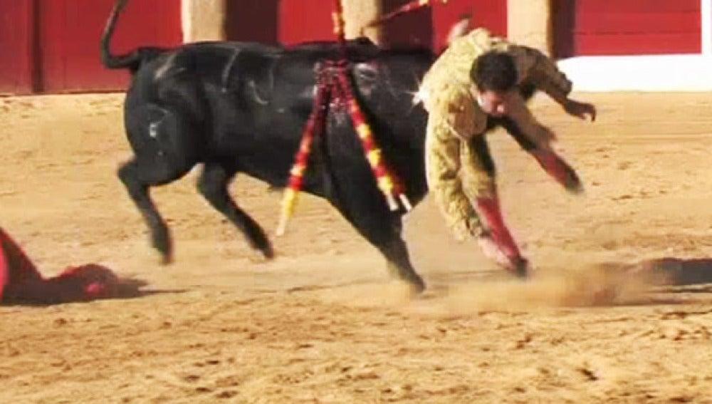 Cogida de toros