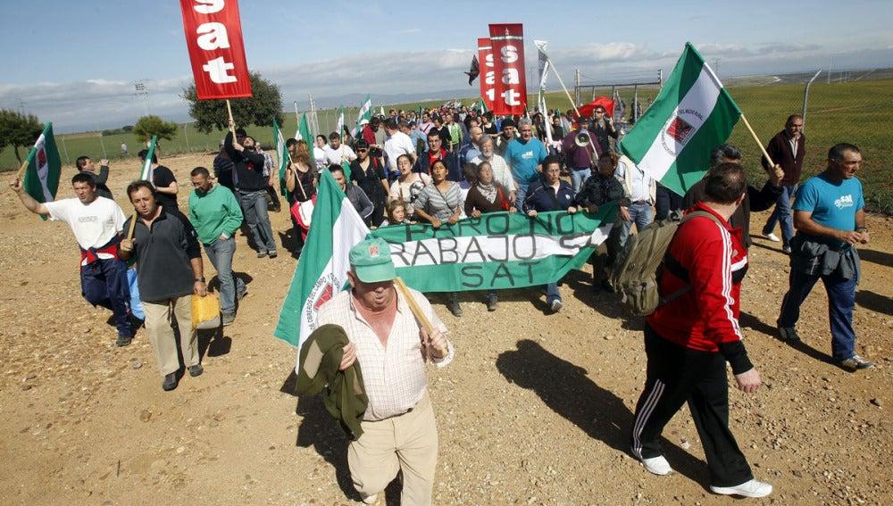 Manifestación de jornaleros en Palma del Río