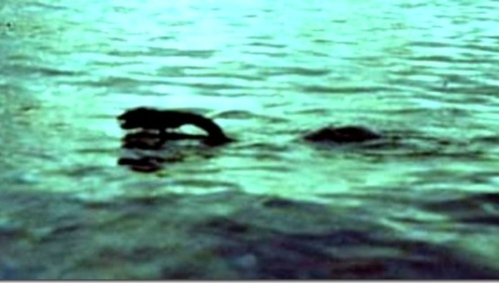 Monstruo Lago