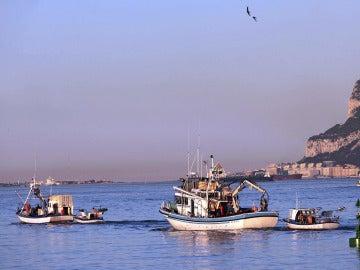 Pesqueros del puerto de Algeciras