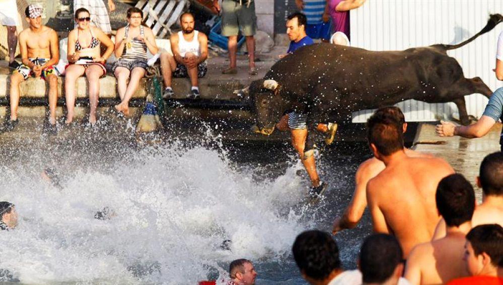 El toro de Bous a la Mar