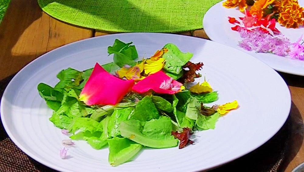 Os enseñamos cómo hacer una ensalada con flores comestibles