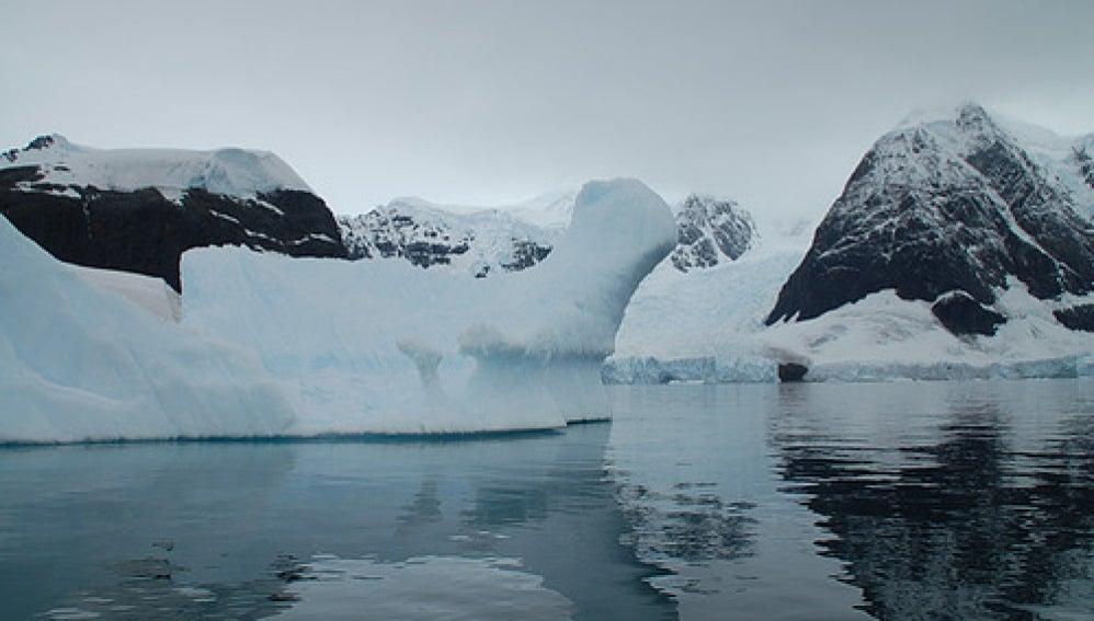 Científicos describen cómo se almacena el carbono en el Océano Austral