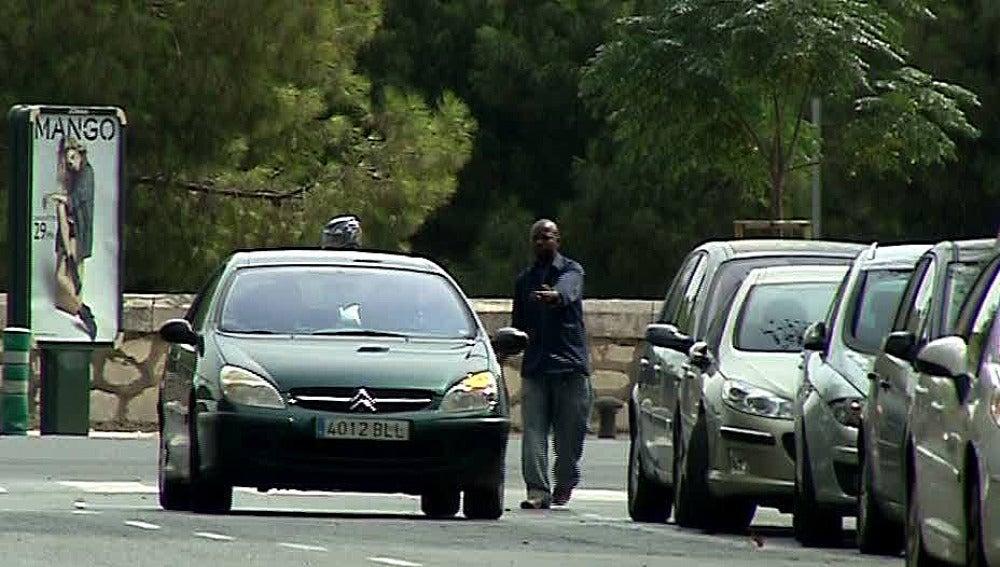 Gorrilla junto a un vehículo en Valencia