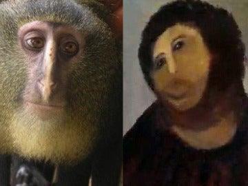 La nueva especia de mono y el Ecce Homo