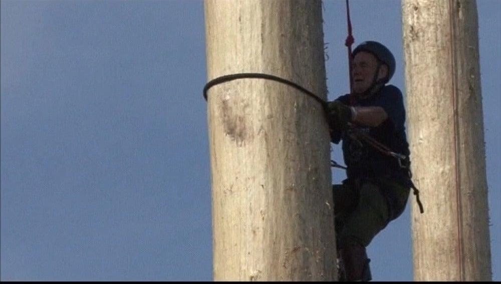 Escalando troncos