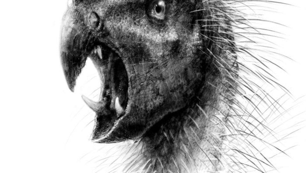 Dinosaurio enano hervívoro
