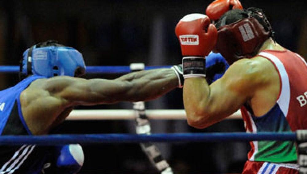 El ser humano evolucionó el puño para defenderse