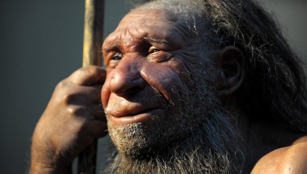 Crear ADN Neanderthal podría ser posible