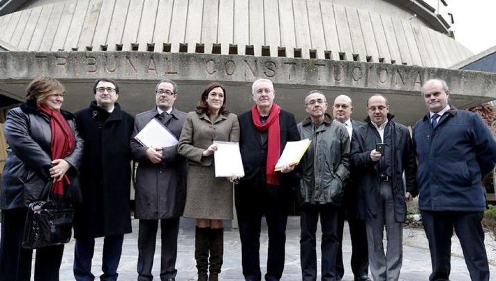 Representantes de la oposición posan en el Tribunal Constitucional