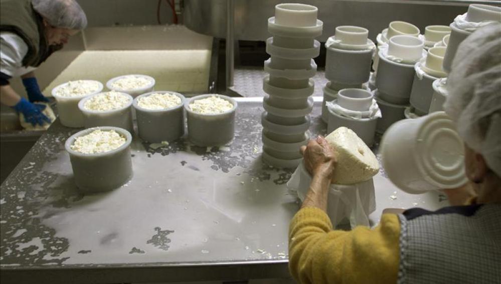 Fabricación de productos lácteos.