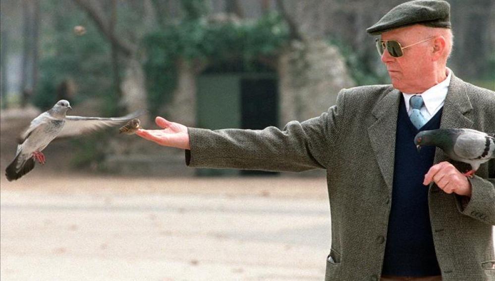Un anciano da de comer a las palomas mientras pasea por el madrileño Parque de El Retiro