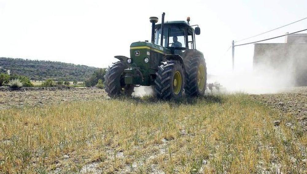 Un tractor arando