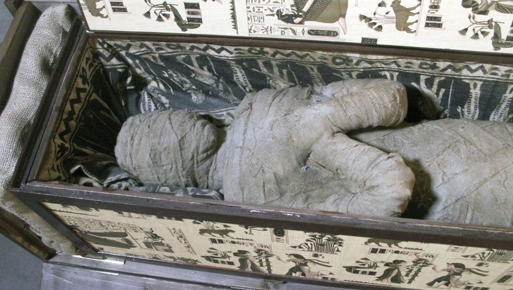 Momia en el interior de un sarcófago