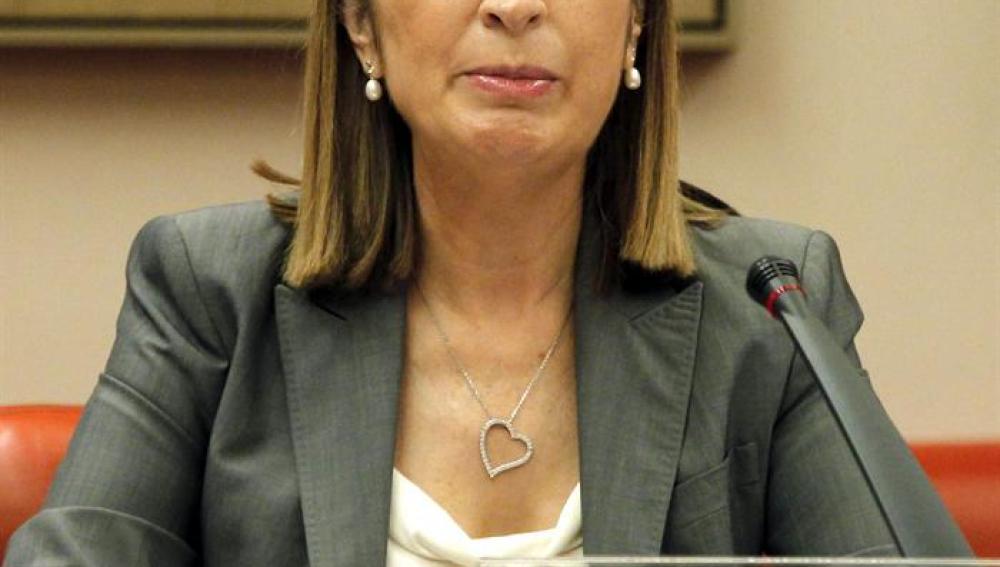 Ana Pastor comparece en el Congreso por el accidente de Santiago