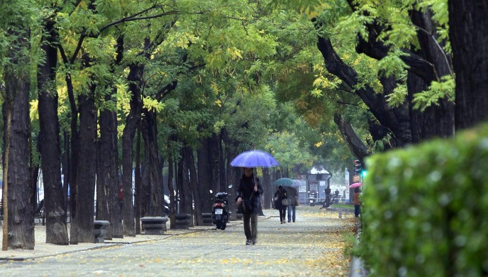 Una mujer con paraguas se protege de la lluvia