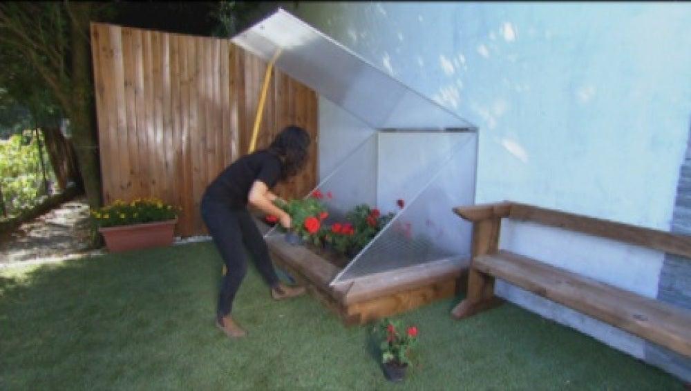 Antena 3 tv construimos un sencillo invernadero para la - Invernadero casero terraza ...