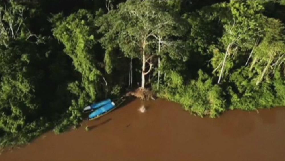 Salto al Amazonas desde 35 metros