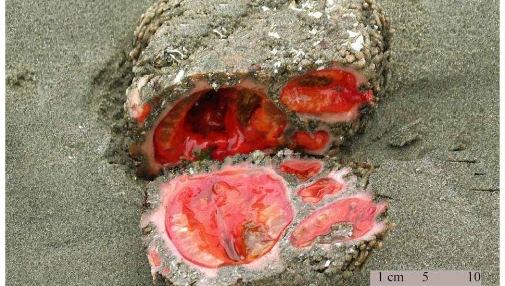 La piedra sangrante