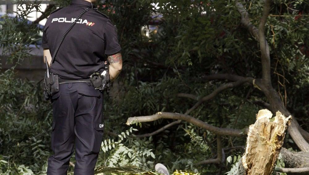 Un policía vigila la zona donde un hombre ha muerto al caerle una rama en el parque del Retiro