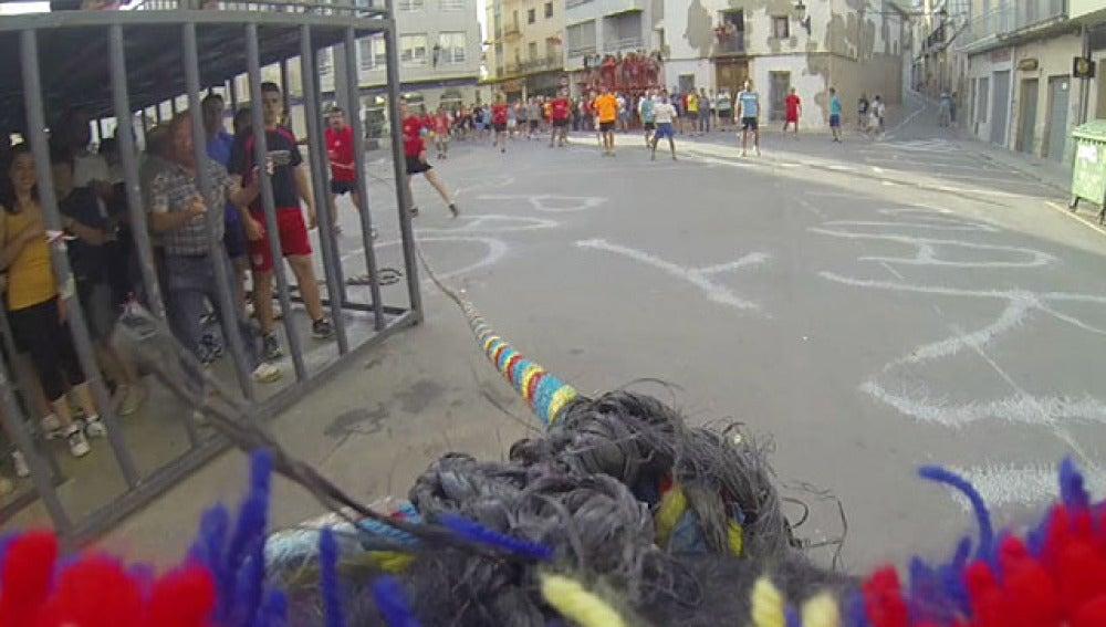 Un toro en el 'Bous en corda'