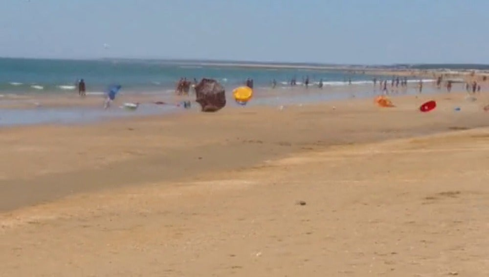 Tolvanera en una playa de Huelva