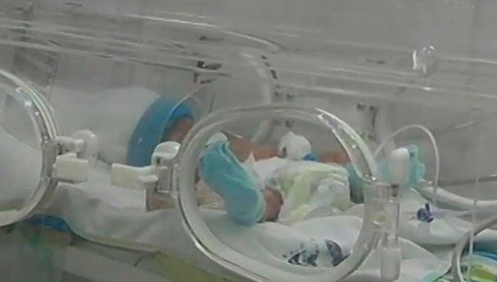 Una de las primeras imágenes de los cuatrilizos