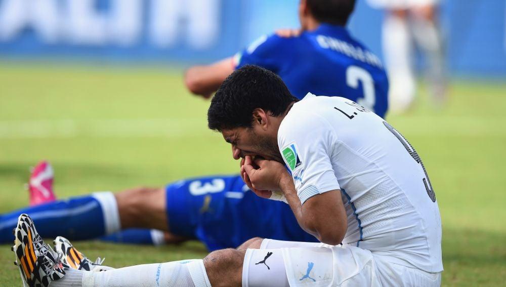 Luis Suárez y Chiellini, tras el mordisco en el Mundial