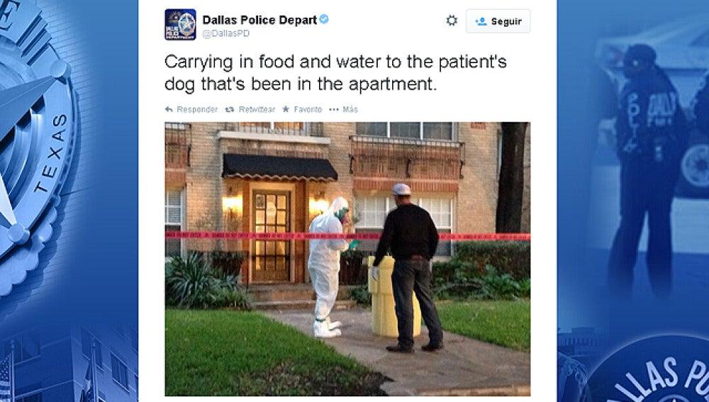 La policía de Dallas informa en Twitter sobre los cuidados al perro