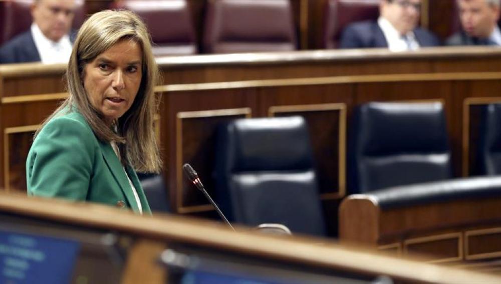 Ana Mato en el Congreso de los diputados