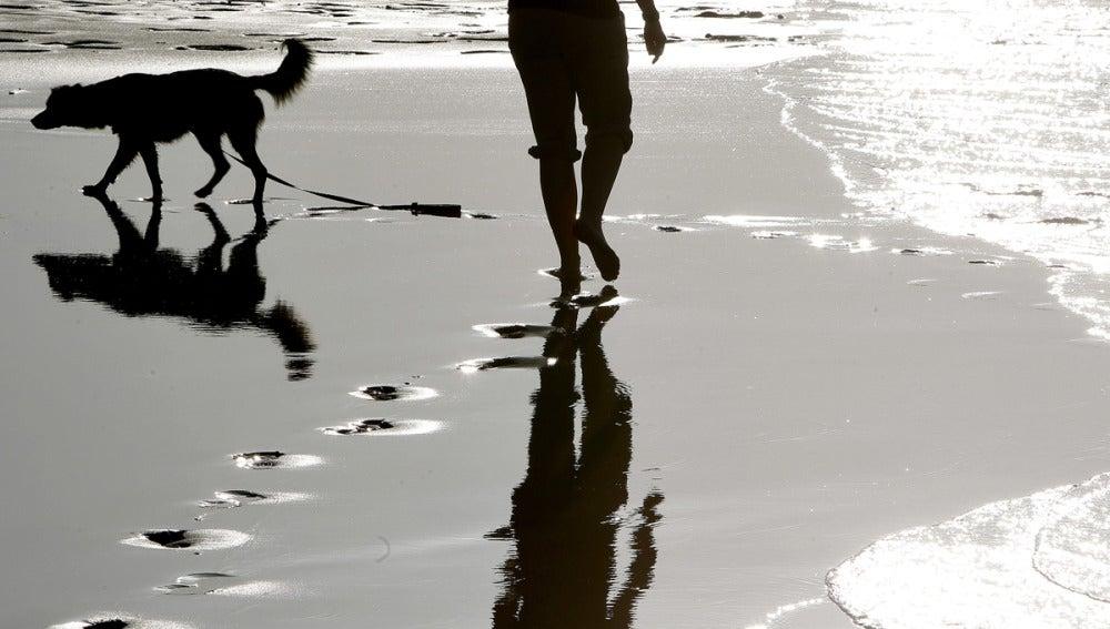 Una mujer pasea con su perro por la playa