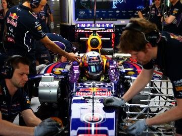 Carlos Sainz Jr, dentro del monoplaza de Red Bull