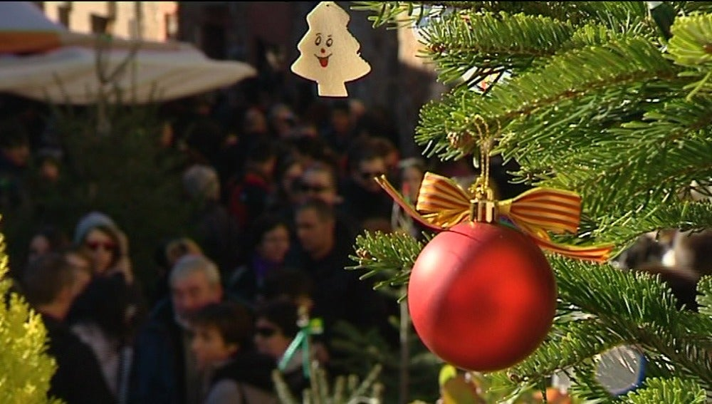 A la búsqueda del árbol de Navidad perfecto en la feria de Espinelves