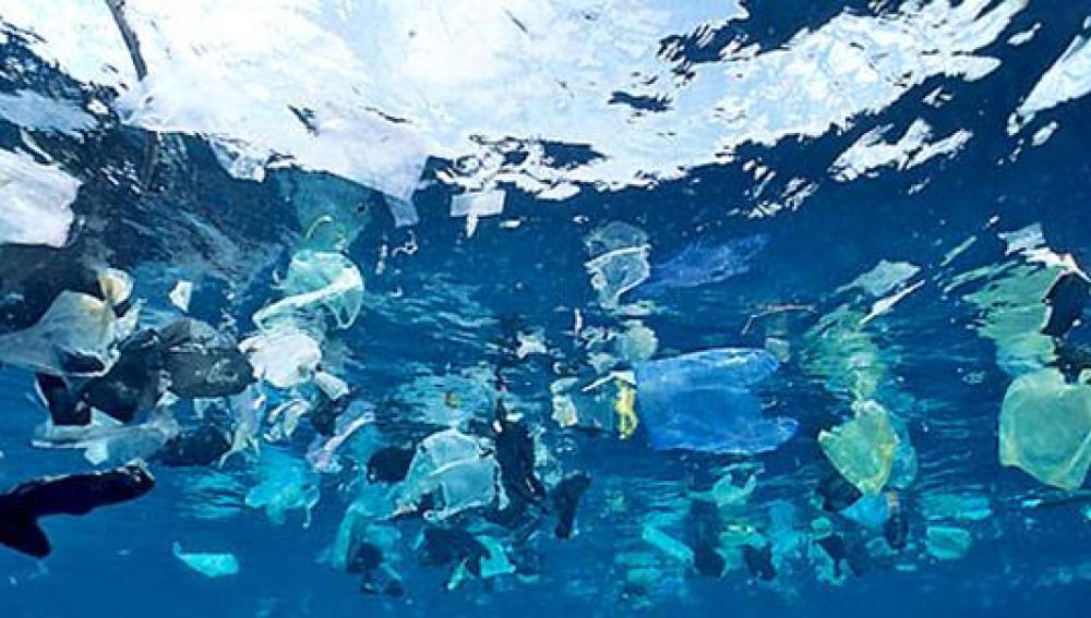 Contaminación de plásticos en nuestros oceanos